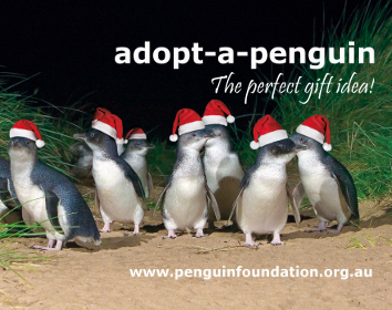 Adopt a penguin for Christmas2