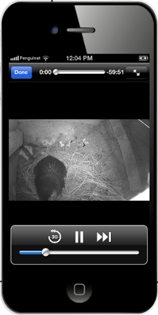 Burrow cam iPhone 228x
