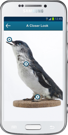 3D penguin Android phone 228x