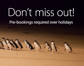 pre booking home