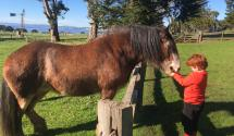 Oskar and Clydesdale 1
