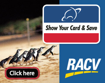 RACV Partner promo web tile